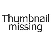 433829 GIBDD Tyumeny dps 250x0 3960.2640.0.0